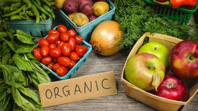 منتجات الطعام العضويه - الاورجانيك