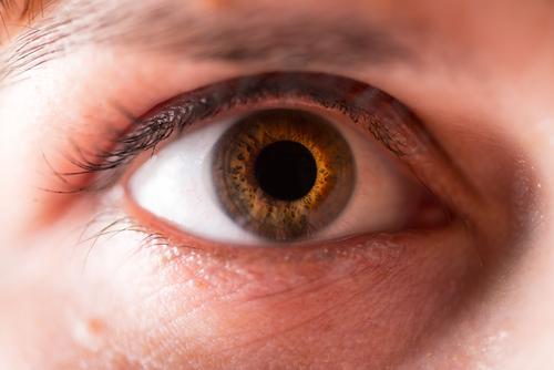 ما هى رفرفة العين؟